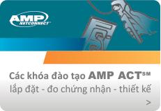 Khóa đào tạo AMP - ACT